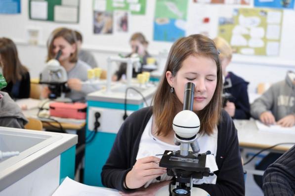 Как сменить основную школу в Словении